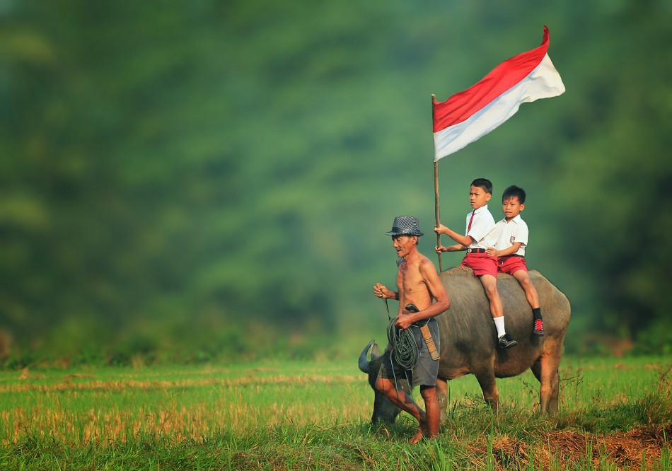 Indonesia by Herman Damar